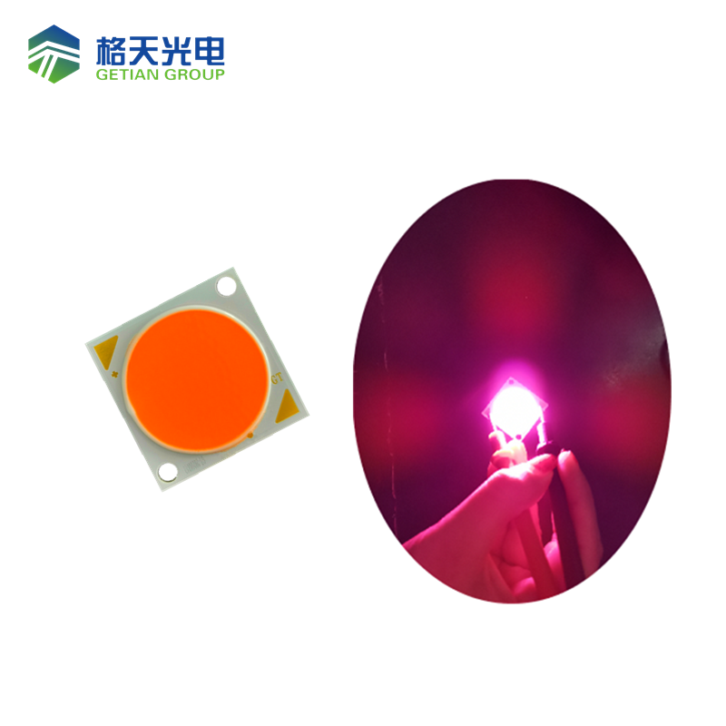 Getian High PPF Plant Growing COB 2828 1212 37.5W 50W PRB Spectrum Led for Green Housing Lighting