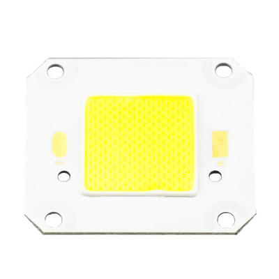 4046 Super Bright 150-160LM/W COB LED 30W
